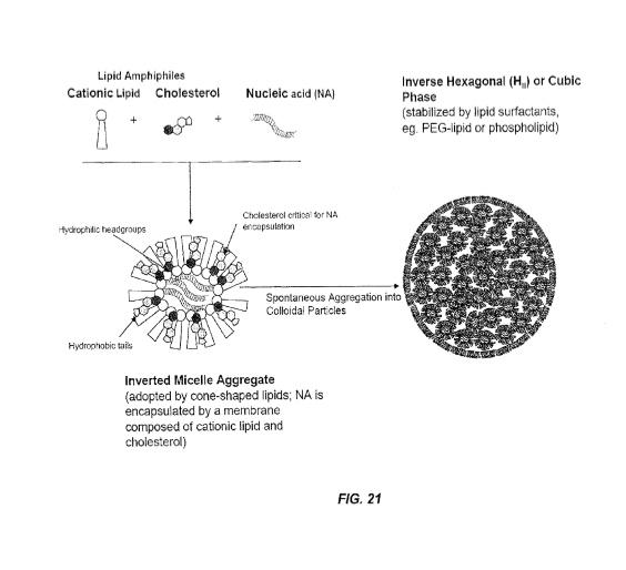 lipid-nanoparticles
